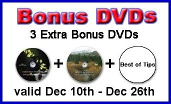 bonus%203%20DVDs Landscape DVDs for Beginners